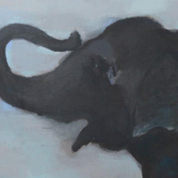 elephant-quadr
